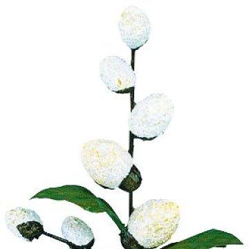 Blumenmädchen mit Maikätzchen