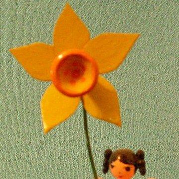 Blumenkind Narzisse